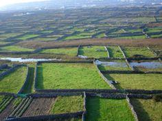 Dun Aengus, Aran Islands, Ireland | Aer Arann Islands - Inis Mór - Dun Aonghus Fortress, Tedfest, Cliffs ...