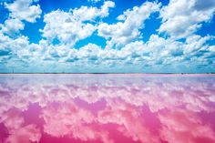 Las Coloradas, Yucatan, Mexico — by Sergio Camalich. I still can't believe there are places like this in the world. #travel #mexico