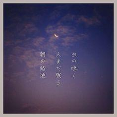 虫の鳴く 人まだ眠る 朝の路地 [山乃鯨] #photoikku #instagram #jhaiku #俳句