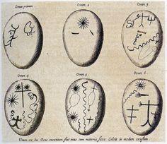 Athanasius Kircher, Mundus subterraneus, Amsterdam, 1682 Cosmic Egg, Kraken, Numerology, 17th Century, Amsterdam, Journals, Numbers, Magic, Artists