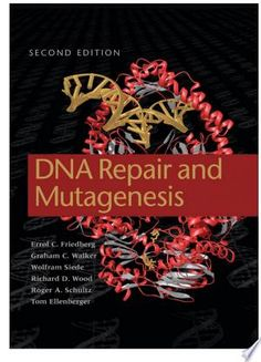 DNA Repair and Mutagenesis PDF By:Errol C. Friedberg,Graham C. Walker,Wolfram Siede,Richard D. WoodPublished on by American Society for Microbiology PressAn essential resource for all scientists researching cellular responses to DNA damage. Free Books, Good Books, Amazing Books, American Society For Microbiology, Molecular Genetics, Dna Repair, Math Concepts, Life Science, Reading Lists