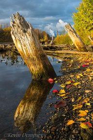 Kaministiquia River Shoreline, Ontario, Canada (outside Thunder Bay, ON) O Canada, Canada Travel, Canada Ontario, Beautiful Sites, Beautiful Places, Peaceful Places, Cosmos, Nostalgia, Science And Nature