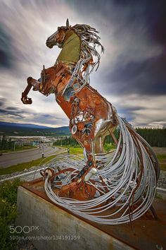 The Horse of Whitehorse - Pinned by Mak Khalaf The Horse of Whitehorse a metal sculpture by Daphne Mennell Whithorse Yukon Territory Canada Fine Art artcanadahorsemetalscrap metalsculptureskywhitehorsewild westyukonyjon territorydaphne mennell by ChrisRHasenbichler