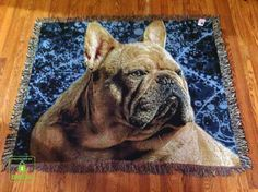 "Here is one of my customer's photo located in Canada..We decided on a fun abstract background featuring her beautiful frenchie ""Yoshi""."