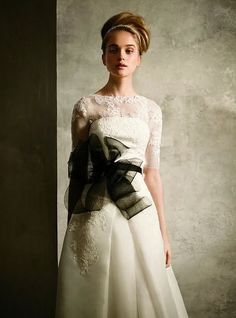 Vera Wang for David's Bridal. I like the lace overlay, and the pop of the black, but the rest isn't my style.