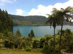 "The aqua"" Blue lake"" which is side by side with the stunning Green lake"" in Rotorua."