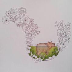 Little hippo #magicaljungle #magicaljunglecoloringbook #johannabasford #johannabasfordmagicaljungle #coloringforadult #adultcoloring #adultcoloringbook #coloringbook #coloringbookforadult #hippo #prismacolor
