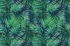 Palm tree leaves seamless pattern by Karina Cornelius on Creative Market