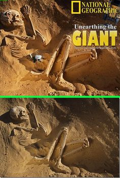 Fake – Another giant skeleton(Fake National Geogra… Ancient Aliens, Aliens And Ufos, Ancient Egypt, Ancient History, European History, Ancient Greece, American History, Giant Skeletons Found, Nephilim Giants