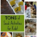 TONS of Seed Activities for Kids
