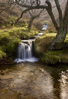 Derbyshire, England (reminds me of Ps.1:1-3)