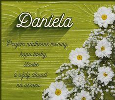 Flower Aesthetic, Herbs, Flowers, Herb, Royal Icing Flowers, Flower, Florals, Floral, Medicinal Plants