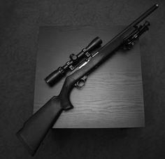 Ruger 10-22 Tactical