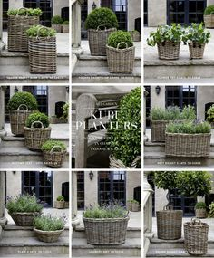 Weekend Wandering in Baskets » Talk of the House