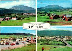 Hedmark fylke Tynset kommune 4-bilders kort utg Aune Brukt 1969
