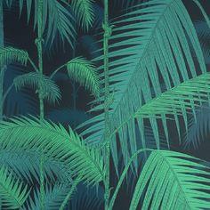 palm jungle - Google Search