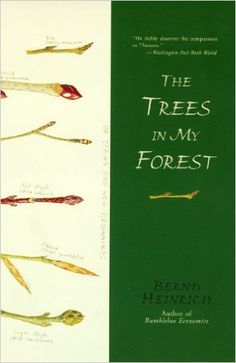 The Trees in My Forest: Bernd Heinrich: 9780060929428: Amazon.com: Books