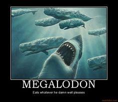 MEGALODON. Being a badass
