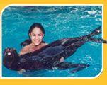 Swim with dolphins Puerto Vallarta - Dolphin Swim at Aquaventuras Vallarta Mexico