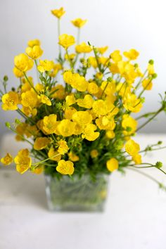 This would be a beautiful little arrangement of the wild buttercups Wesley loves to pick on our walks. So lovely My Flower, Fresh Flowers, Yellow Flowers, Wild Flowers, Beautiful Flowers, Color Yellow, Arte Floral, Ikebana, Planting Flowers