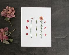 Botanical Art Print. 4x5 Print. Watercolor by TheBlueRabbitHouse