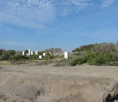 Old Cemetary off the Hatteras National Seashore by CathyLindseyART, $7.95