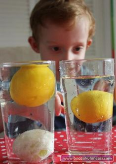 Playful Science: Sink or Float Experiment with Lemons / Il limone galleggia? Kindergarten Science Activities, Easy Science Experiments, Science Fair Projects, Science Classroom, Science For Kids, Science And Nature, Fun Projects, Nature Activities, How To Clean Pennies