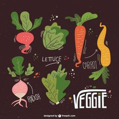 Illustrated veggies collection Free Vector