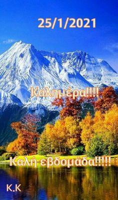 Beautiful Pink Roses, Mountains, Nature, Travel, Decor, Naturaleza, Viajes, Decoration, Destinations