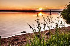 Midnight sun in Lapland, Finland - One ordinary arctic summer night☀️.