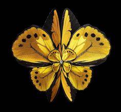 Flowering insect wings by Seb Janiak: Mimesis – Lilium Andromedae