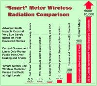 Are Cell Tower RF Emissions Something to Worry About?   SkyVision Solutions … Raising Public Awareness and Finding Solutions to Smart Grid, ...