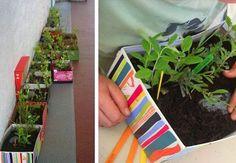 shoebox planter