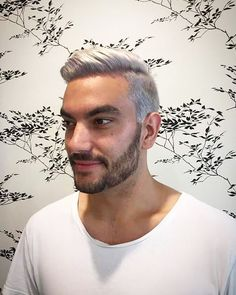 Had too much fun with @casscappello_hair and this combo  #silverhairdontcare #silverhair #apprentice #hairdresser #colourist #barber #fade #bleach #hot #summer #blonde #menshair #zebuhair #zebu