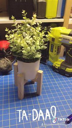 Easy House Plants, House Plants Decor, Plant Decor, Planting Succulents, Garden Plants, Indoor Plants, Wooden Plant Stands, Diy Plant Stand, Inside Plants