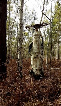 Woodland art sculpture in situ , eerie forest fantasy creature Haunted Woods, Haunted Forest, Haunted Trail Ideas, Creepy Art, Scary, Art Sinistre, Weird Trees, Unique Trees, Horror Art