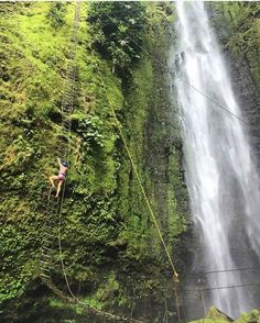 Oh yes.  #Waterfall #rappelling in gorgeous #CostaRica via @outdoor_sunni! #vacations #CostaRicaExperts #adventure