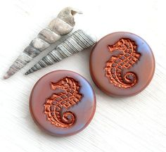 Hey, I found this really awesome Etsy listing at https://www.etsy.com/listing/202850698/czech-seahorse-beads-mixed-blue-pink