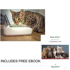 Innovative motion sensor cat food dispenser suitable for cats and small dogs dry and wet food