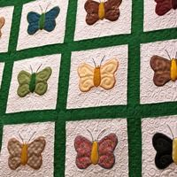 Maybe I can use the photo of the butterflies to make a pattern for a quilt square.