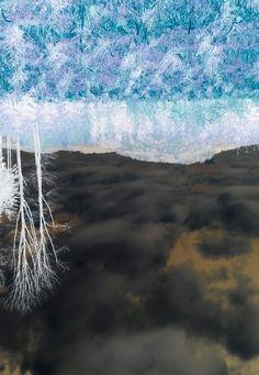 inversion of summer moravian forest