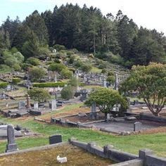 Ferndale Historic Cemetery - Ferndale, CA, United States. A very interesting cemetery.