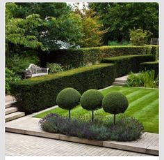 TOP TEN EASY-TO-GROW SHADE LOVING PERENNIALS Landform consultants, private garden, Richmond Surrey. This garden combines extensive structural hedging, a focal pond with aquatic planting, herbaceous borders and lawns. Formal Gardens, Outdoor Gardens, Outdoor Sheds, Topiary Garden, Topiaries, Topiary Trees, Private Garden, Autumn Garden, Back Gardens