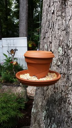 DIY bird feeder from terra-cotta pot + 2 saucers.