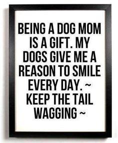 I love being a dog mom!! <3
