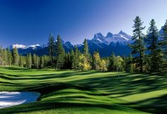 Book Tee Times for golf courses in Alberta. Get access to golf discounts & exclusive special offers on golf courses, resorts, & vacations in Alberta, Canada. Public Golf Courses, Best Golf Courses, Bunker, Banff National Park, National Parks, Golf Holidays, Golf Course Reviews, Canadian Rockies, Golf Tips