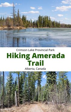 Canadian Travel, Canadian Rockies, Alberta Travel, Celebrity Travel, Alberta Canada, Canada Canada, Best Hikes, Travel Guides, Travel Tips