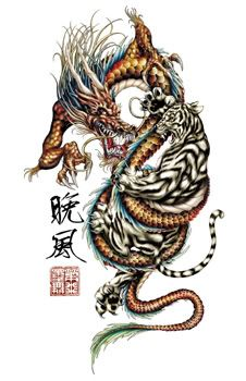 dragon and tiger tattoo crouching tiger hidden dragon tattoo sample ryhh pinterest. Black Bedroom Furniture Sets. Home Design Ideas