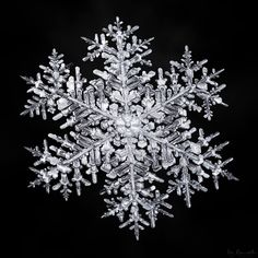 Photo by Don Komarechka, School Photography, Macro Photography, Tattoo Examples, Snowflake Photography, Snowflake Pictures, I Love Snow, What A Beautiful World, Winter Background, Winter Images
