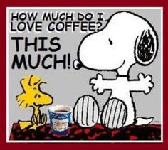 How Much Do I Love Coffee quotes quote coffee morning snoopy funny quotes woodstock humor good morning coffee quotes